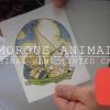 Amorous Animals Cards Youtube Frame