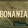12WC: Week 7 Branding like Bonanza {part 1}